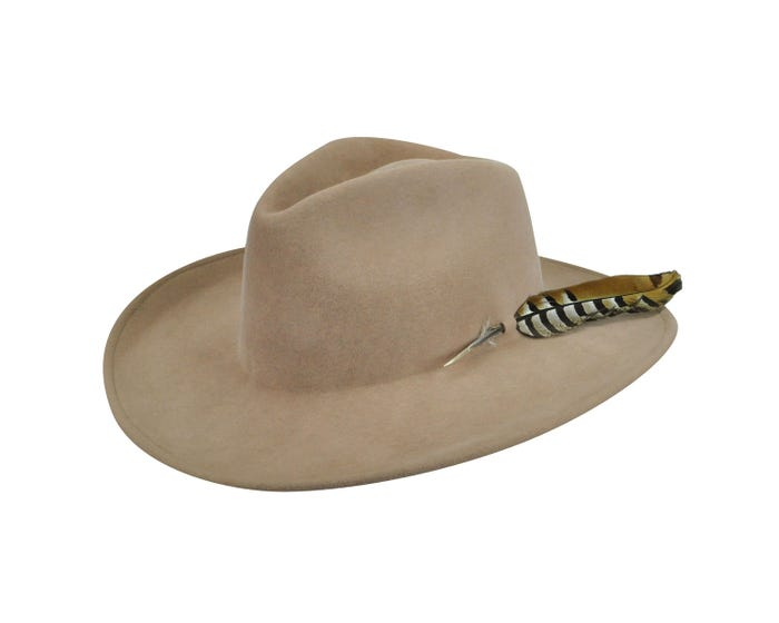 3633dfe11bdfc Renegade by Bailey® Calico Western Hat
