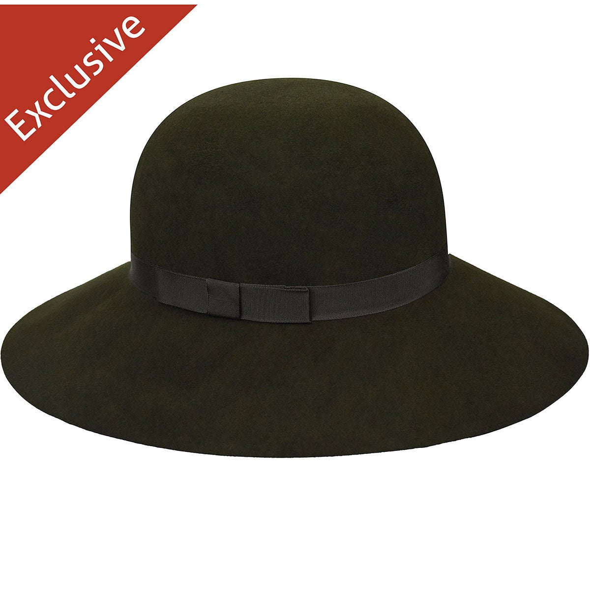 Hats.com Abby Wide Brim Hat in Loden