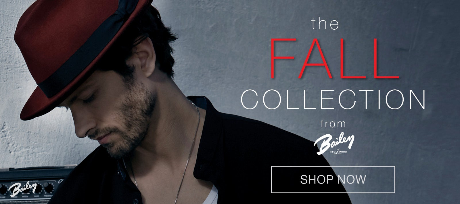 Bailey of Hollywood Fall Collection
